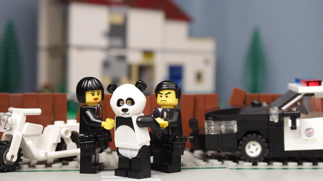 Sad Panda =(