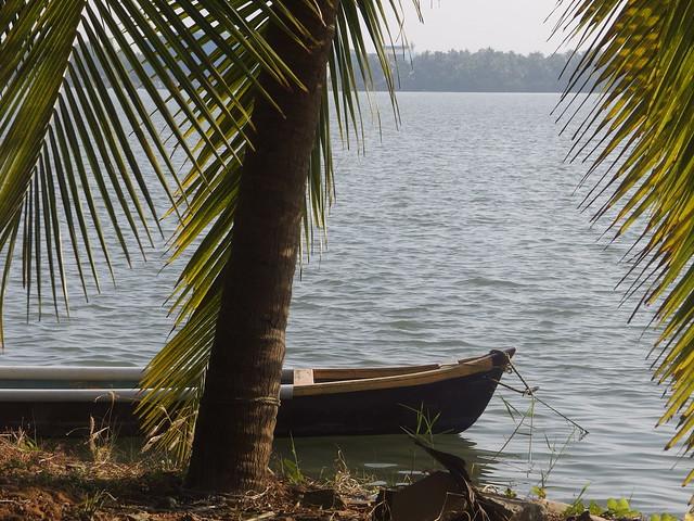 River Fluss Backwater Udupi District Karnataka South India