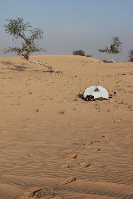 Camping in the UAE desert