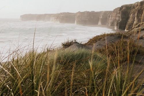 newzealand ruggedcoast blacksanddunes