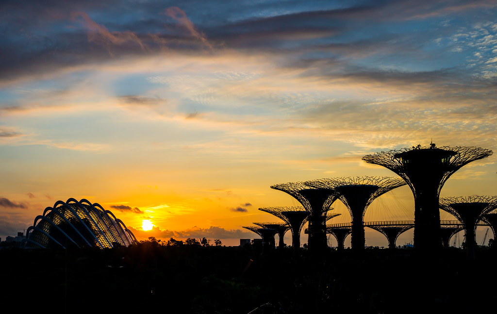 Dawn breaking at Gardens By The Bay | Mac Qin | Flickr