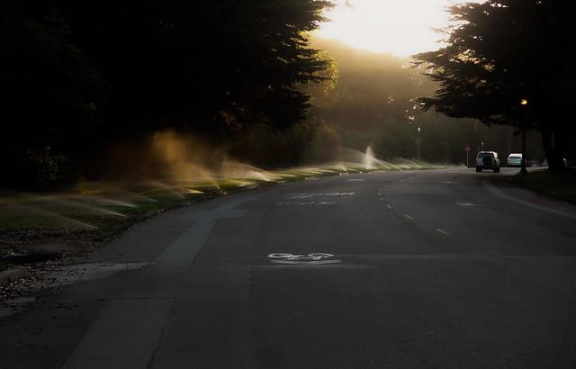 Sprinklers in the sun, morning.  Golden Gate Park, San Francisco (2013)