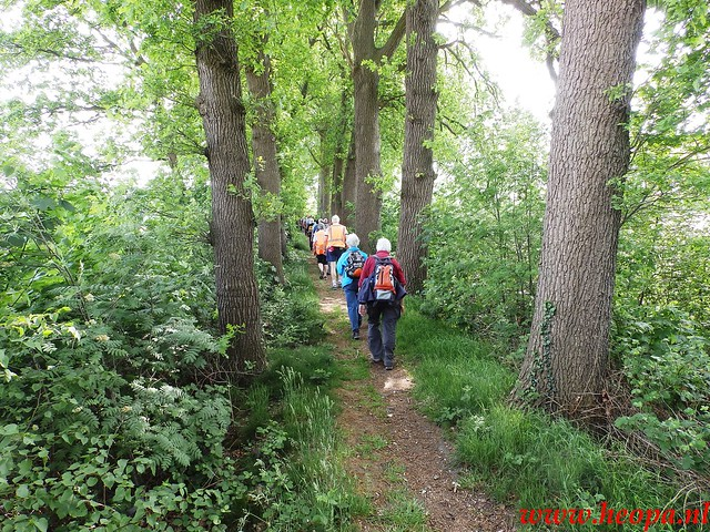 2016-05-18    St'Michielsgestel  26 Km  (38)