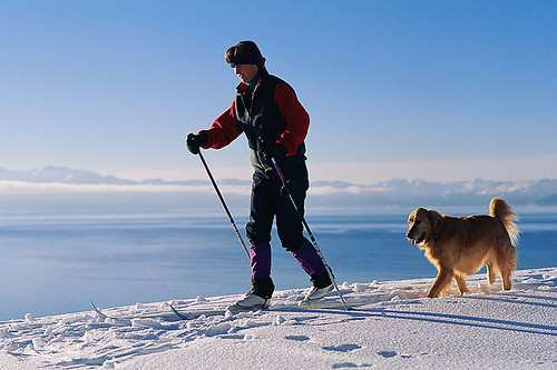 Cross-country Skiing; Winter Outdoor Recreation in British Columbia, Canada