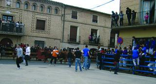 114. Sortida a les festes de Buñuel (Navarra), 2011 | by Cargolins