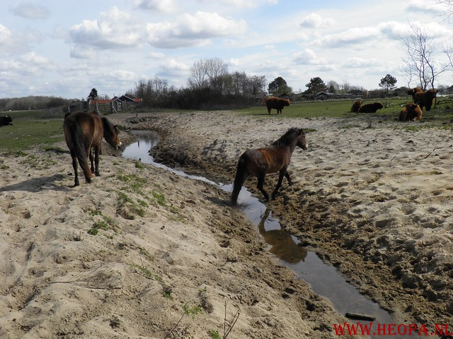 Castricum 15-04-2012 26 Km (52)