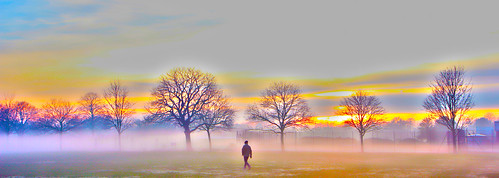 uk trees light sunset england sun sunlight mist tree london nature fog solar alone parks sunsets ilford eastlondon londonparks valentinespark gantshill uknature londonsunset treemist londonnature ukparks