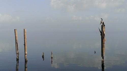 flickrandroidapp:filter=none lakefrontdowntownsanford htcevo4glte android florida lakemonroe lovefl instaflorida instagram lake water sky