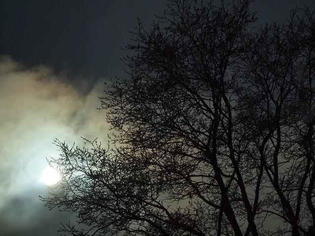 Sonne o. Nebel