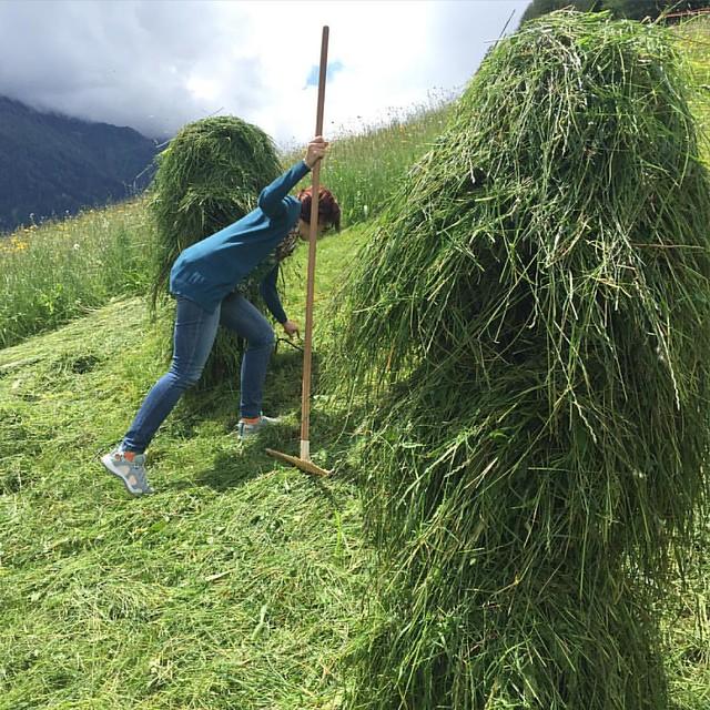 """Traditional hay making in #stubai is called """"stiefeln"""" - @stubai_tirol @stubai_glacier @stubaital_tirol #stubai #stubaital #stubaiergletscher #tirol #tyrol #österreich #austria #tourismus #reisen #reiseblogger #LiveTravelChannel #travelingtheworld #travel"""