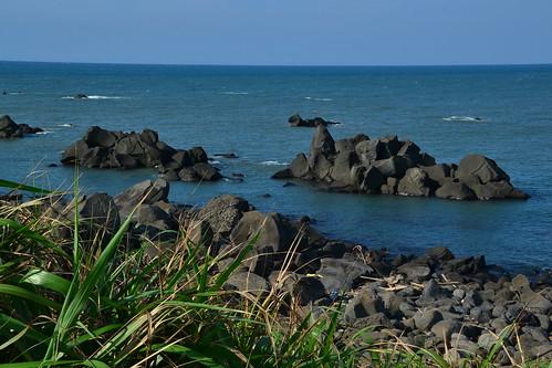 圖7.富貴角的礁岸上遍佈大大小小的黑色岩石角礫-風稜石。