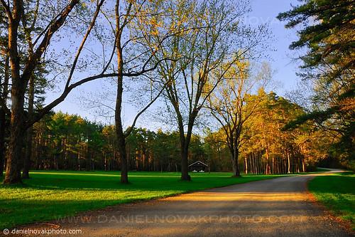 park morning trees light ny newyork color green nature yellow southwales sunrise landscape outdoors spring buffalo hike foliage trail upstatenewyork warmlight westernnewyork eastaurora buffaloniagara emerypark emerycountypark