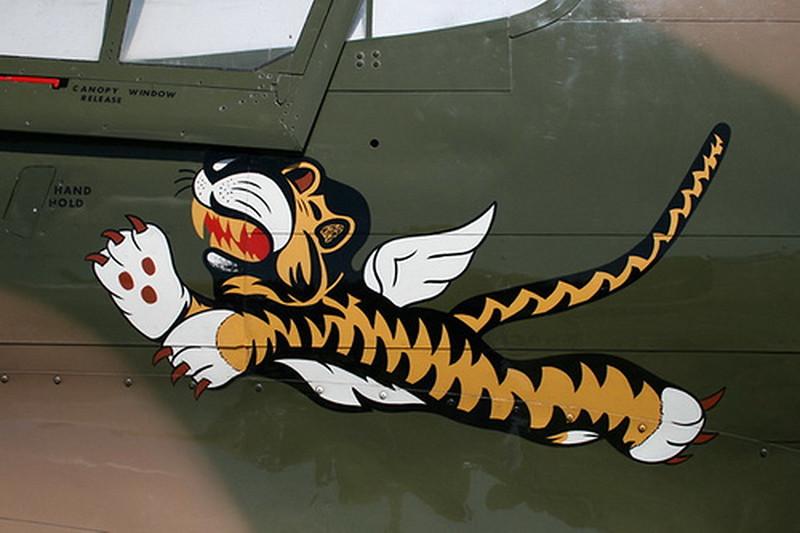 P-40 Warhawk (1)