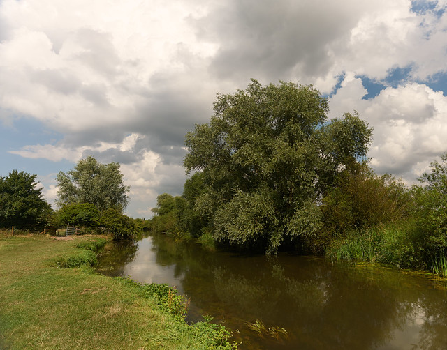High summer, Grantchester Meadow, Cambridge UK
