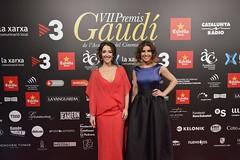 Catifa vermella VII Premis Gaudí (35)