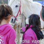 Viajefilos en Albacete 26