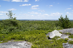 Blue Mountain Hiking Trail
