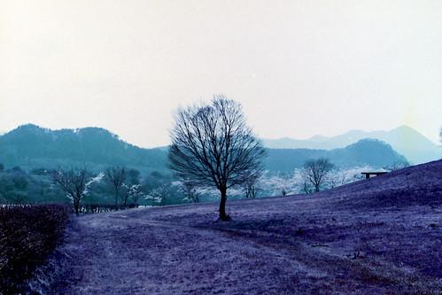 landscape 日本 宮城県 刈田郡