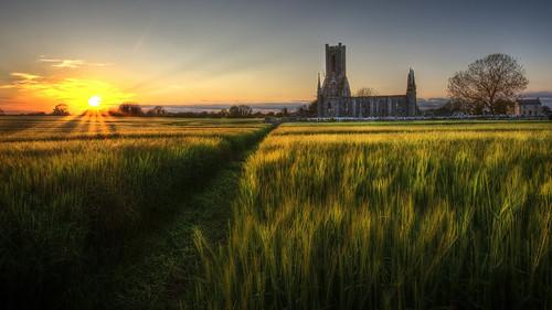 sun church set path ruin crop feild kildare ballinafadh