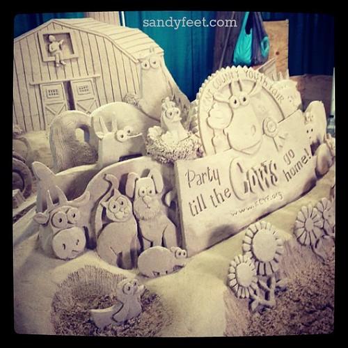 Having sandy fun at the Kent County Youth Fair! | by sandyfeet