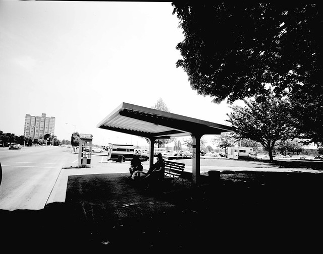 Holladay Park bus shelter