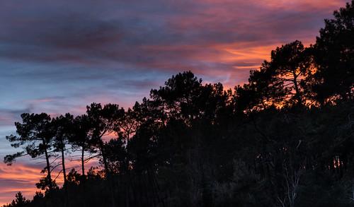 france photographie hiver paysage saison leslandes yons