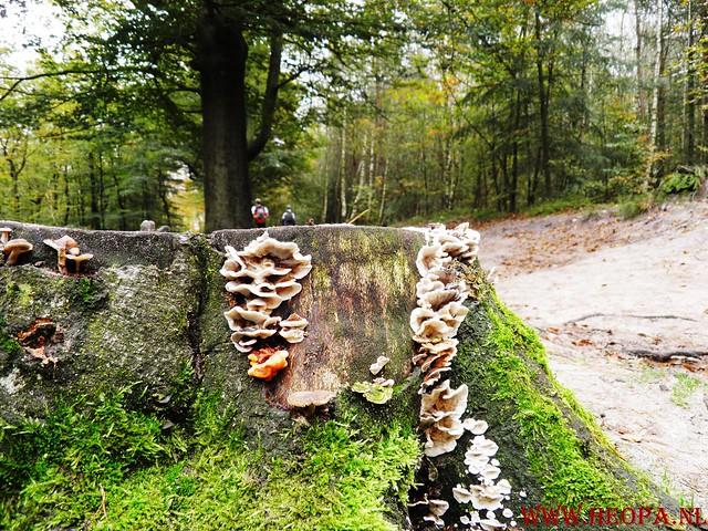 20-10-2012     Wedeblick-   Driebergen        25 Km (118)