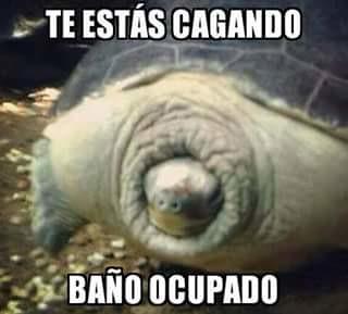 Fotos En El Bano Memes.Memes Graciosos Para Compartir En Facebook Bano Ocupado