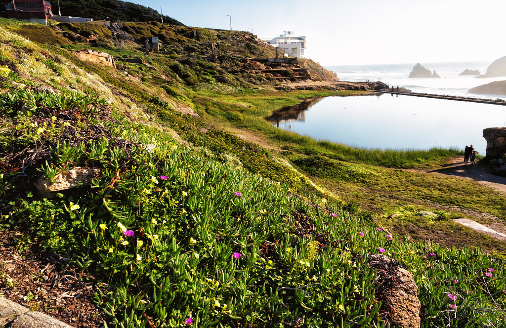 California Nature Landscape-- Sutro Baths
