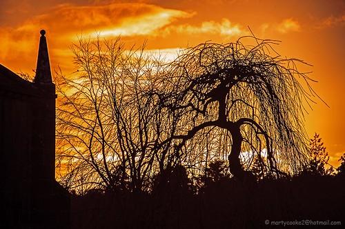 sunset evening sunsets eveningsky coloredsky colouredsky
