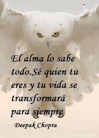Frase De Deepak Chopra El Alma Lo Sabe Todo Ifttt1dtw