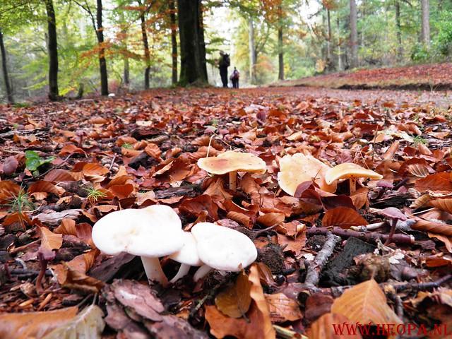 20-10-2012     Wedeblick-   Driebergen        25 Km (110)
