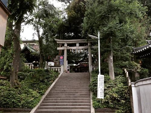 2016年6月14日  今日は、大崎の居木神社に寄ってみました。('∇')  #御朱印 #御朱印帳 #日本武尊