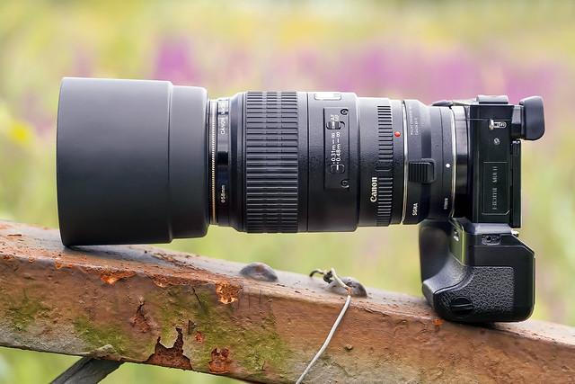 SONY ⍺6000 & Canon EF100mm ƒ/2.8 Macro USM on Sigma MC-11