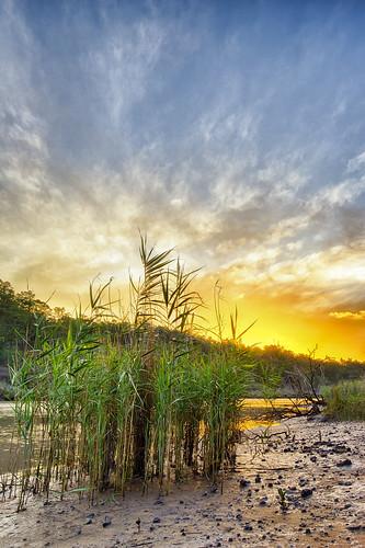 sunset nature landscape australia brisbane queensland hdr