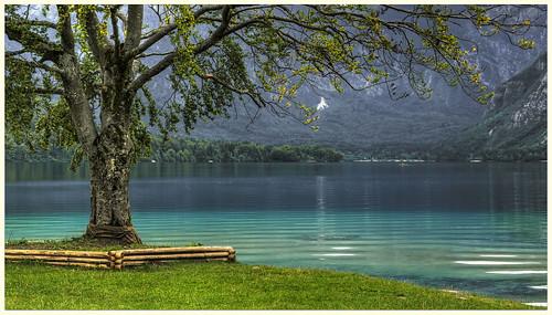 Lago Bohinj   by Vvillamon