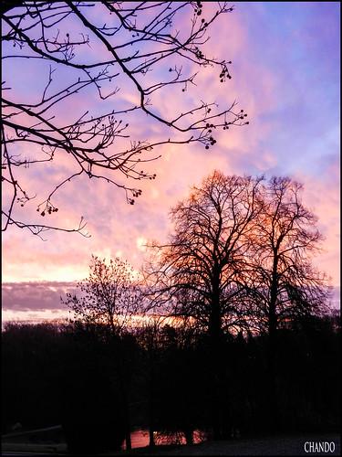 sky clouds sunrise belgique bruxelles ciel nuages aube woluwesaintpierre parcdewoluwé