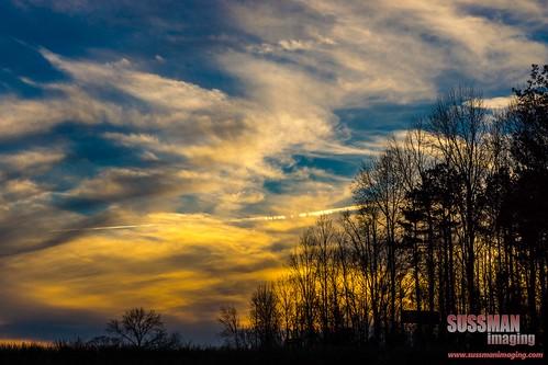 trees sunset sky nature silhouette clouds georgia unitedstates jefferson jacksoncounty thesussman sonyslta77 sussmanimaging