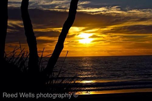 morning beach beautiful sunrise early colourful blackheadbeach