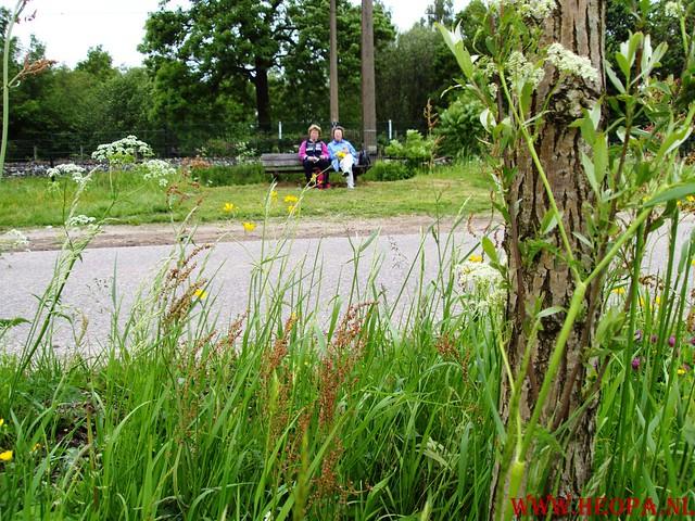 2009-05-16                Nijkerk         20 Km (62)