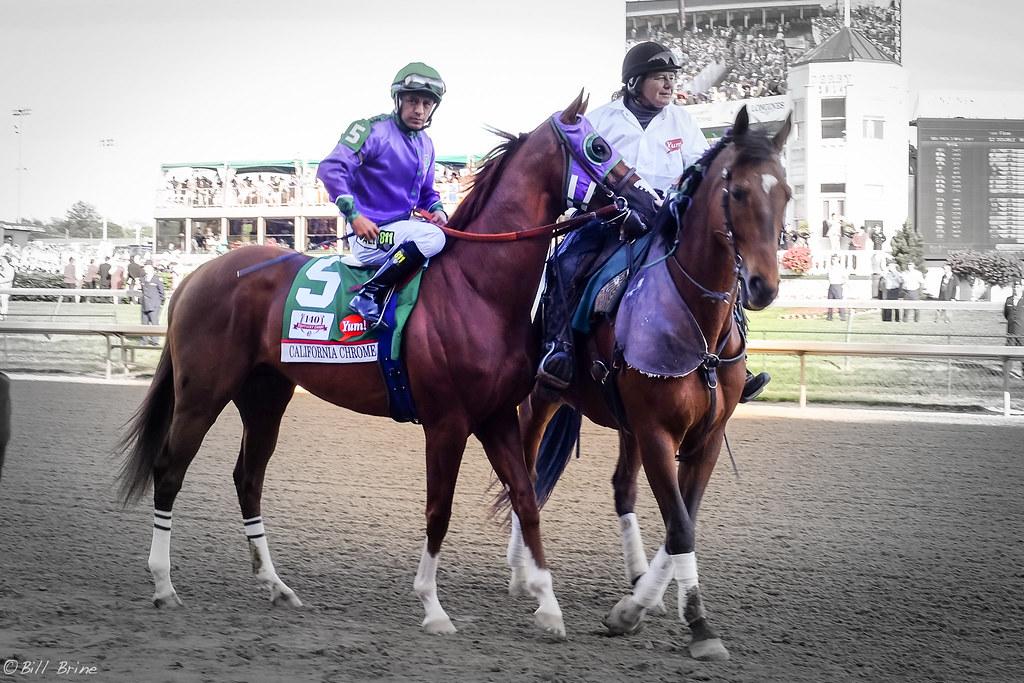 2021 Kentucky Derby Odds