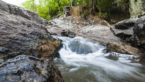park trees motion water waterfall spring rocks state alabama chewacla nikond60