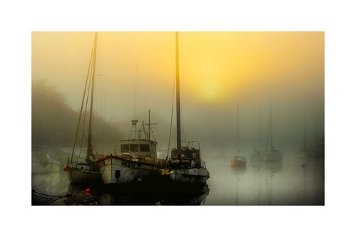 winter light mist color beautiful fog sunrise peaceful gloucestershire severn lydneyharbour