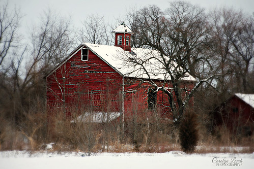 barn redbarn red old weathered decayed architecture building farm landscape snow snowing winter pa pennsylvania lehighvalley carolynlandi weather cold allentown schoenersville 100yearsold historical americana usa structure coth5