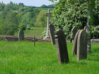 the Shotesham All Saints dead