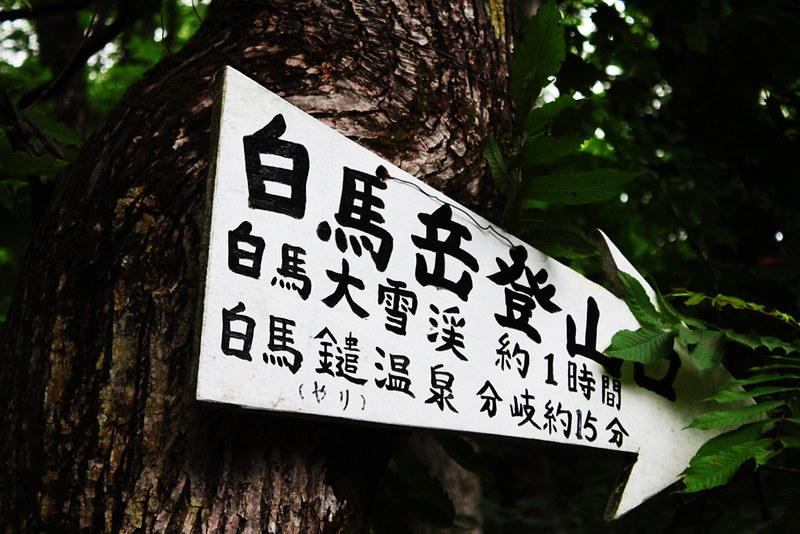 白馬岳_10