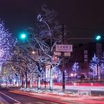御堂筋イルミネーション2013 Midosuji Illumination 2013