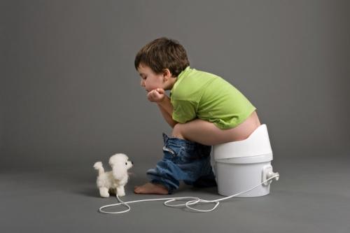 AcDcWc-potty