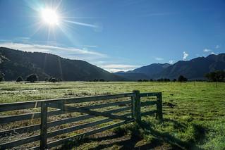 Near Lake Matheson & Fox Glacier, New Zealand   by Mike Beauchamp