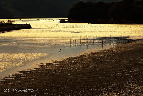sunset reflection japan river spring sand sagapref